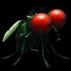Minuscule 2 - La vie privée des insectes