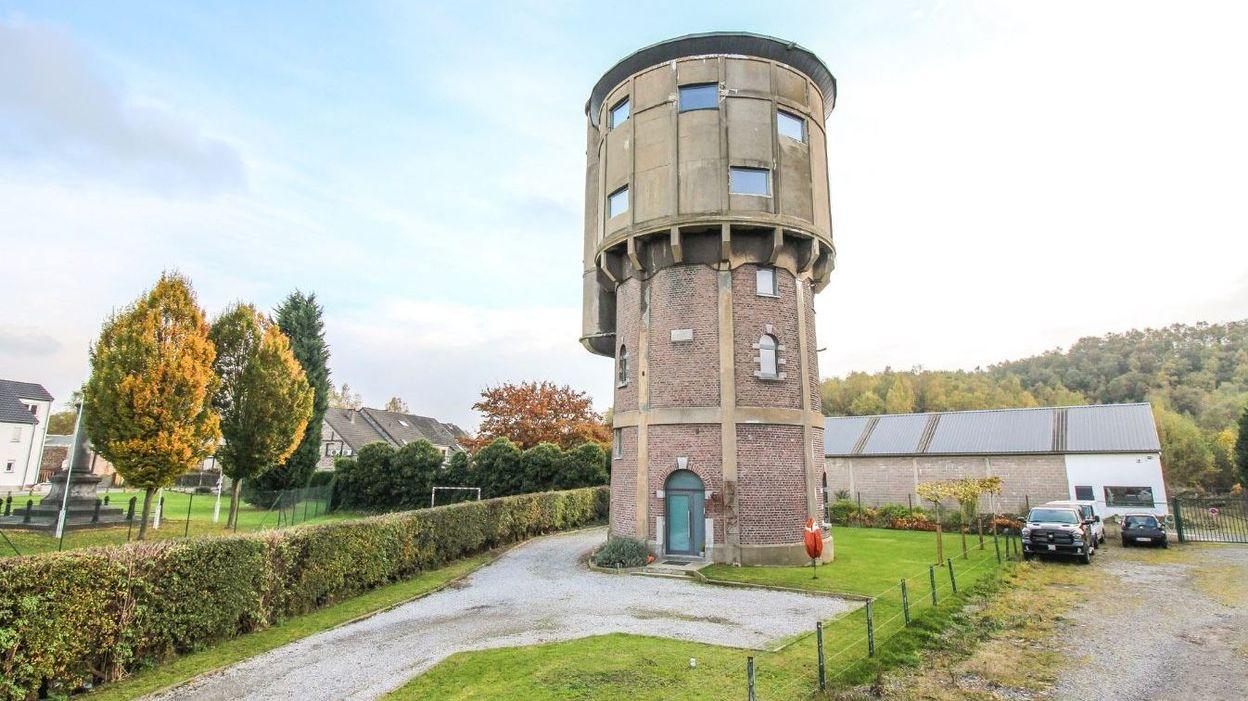 Rocourt une agence immobili re met en vente un ch teau d 39 eau photos - Site de vente en belgique ...