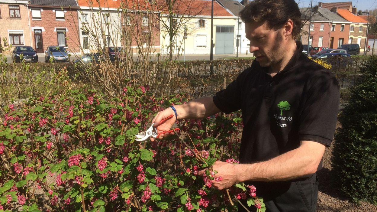 Tous au jardin pour tailler plantes et arbustes for Au jardin info