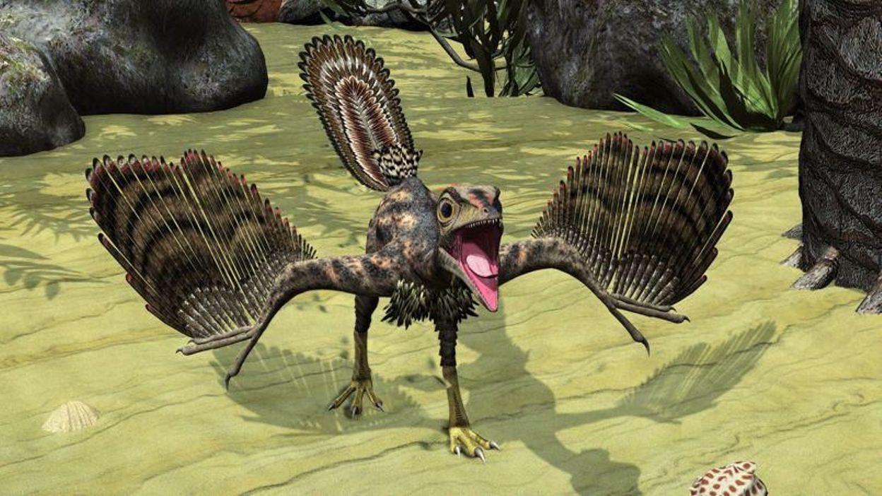 quand les poules avaient des dents ou comment les dinosaures sont devenus des oiseaux. Black Bedroom Furniture Sets. Home Design Ideas