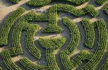Venez jouer à vous perdre dans le Labyrinthe de Durbuy ! (du 2/07 au 2/10)