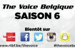 Une saison 6 pour The Voice Belgique !