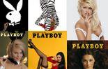 L'univers de Playboy...