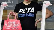 Peta interpelle Hermès sur les conditions d'abattage des autruches pour leur peau