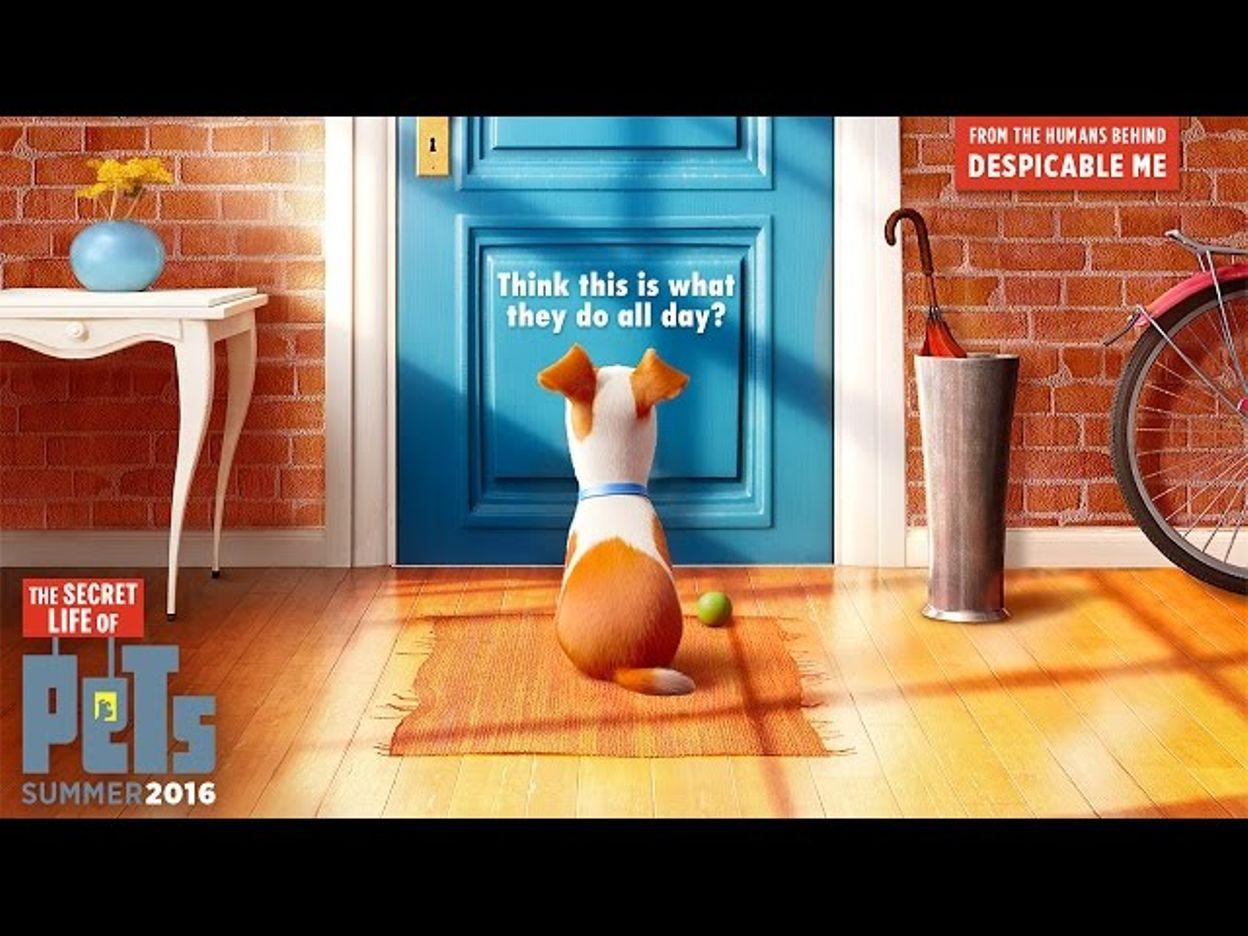 the secret life of pets   official teaser trailer hd   illumination