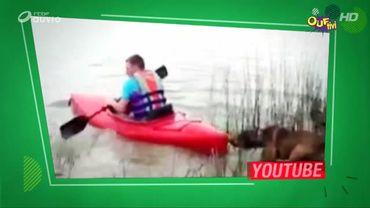Un peu de kayak ?