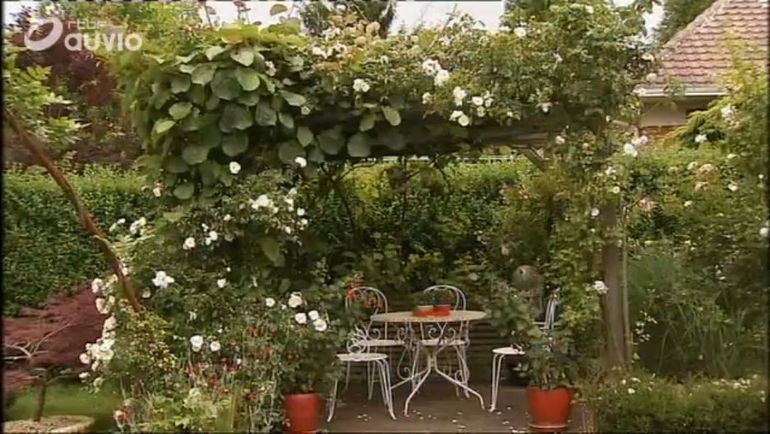 chez francis  u00e0 cuincy    u0026quot le chemin du jardin fleuri