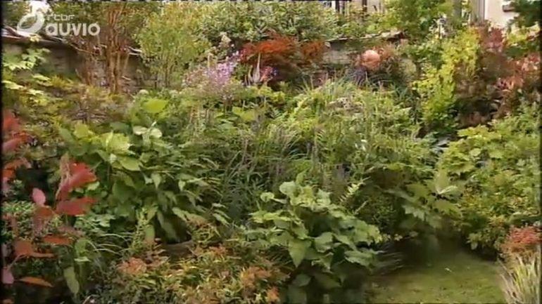 Le mini jardin de patrick boitsfort extrait de l for Jardin et loisir