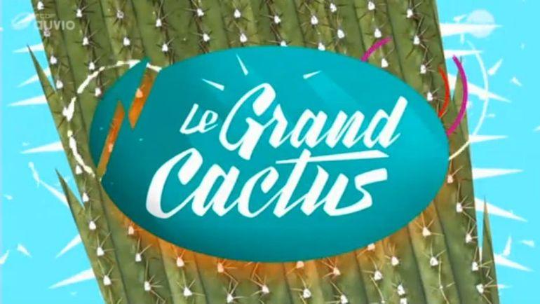 le grand cactus accueil rtbf tv