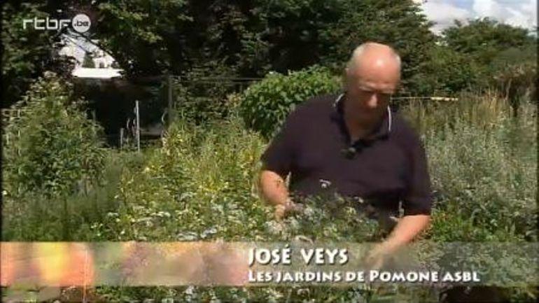 Les jardins de pomone la coriandre extrait de l for Jardin et loisir