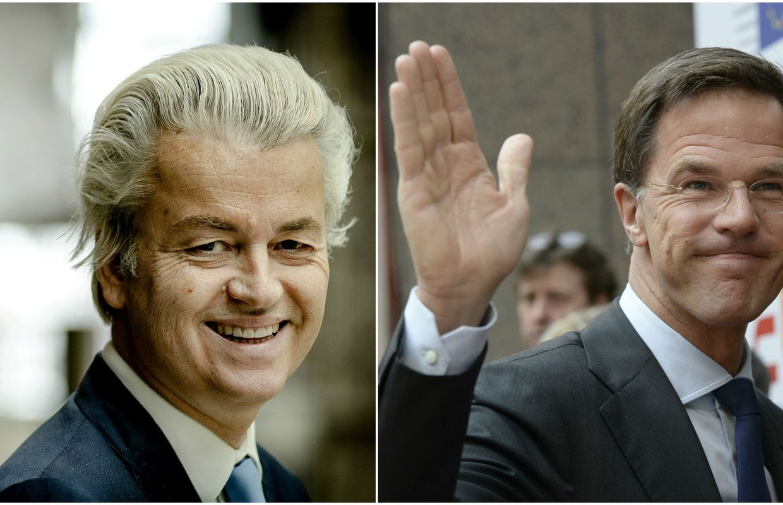 Législatives à risque aux Pays-Bas