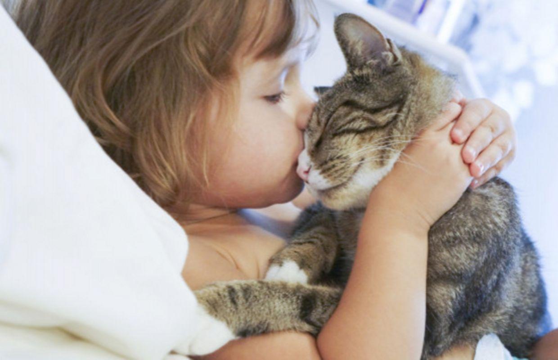 Mon Chat Dort Sur Mes Pieds pourquoi donc mon chat dort-il avec moi ?