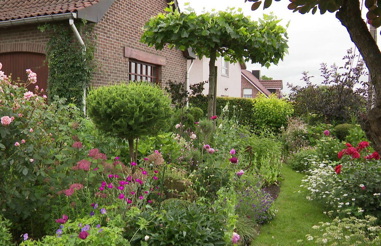 Berthe et Nicolas, les jardiniers de la luxuriance