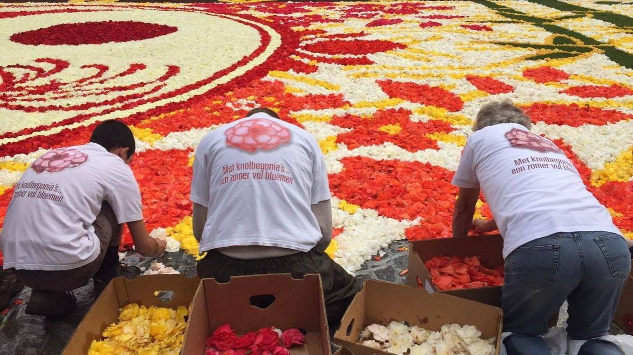 Le tapis de fleurs à la Grand place de Bruxelles 7f7695a4732d658580e2919f1b821faf-1471010238