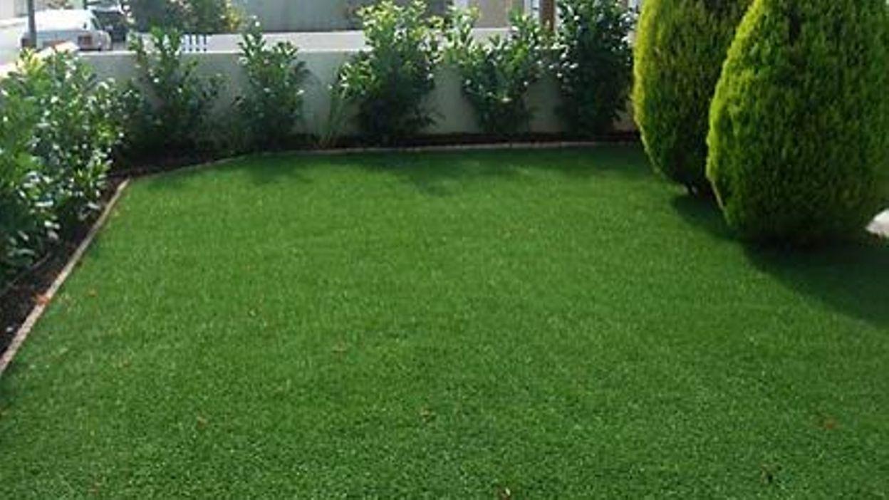 Le renouvellement du gazon rtbf jardins loisirs for Jardin loisir