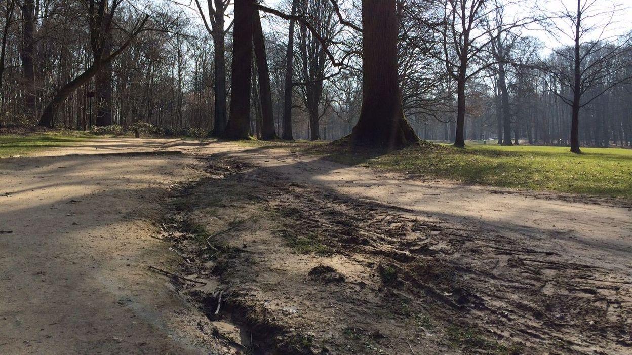 le bois de la cambre parc r gional sept lus plaident les pieds dans l 39 herbe. Black Bedroom Furniture Sets. Home Design Ideas