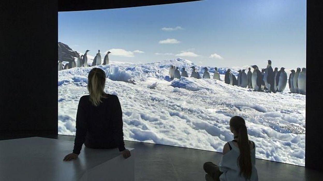 Explorez l'Antarctique comme si vous y étiez ! Au Museum des Sc.Naturelles