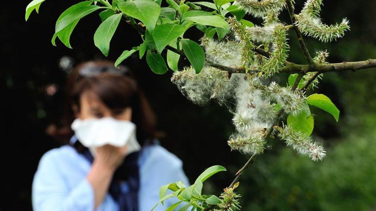 Pollen dans l'air : ne pas confondre allergies et coronavirus - RTBF