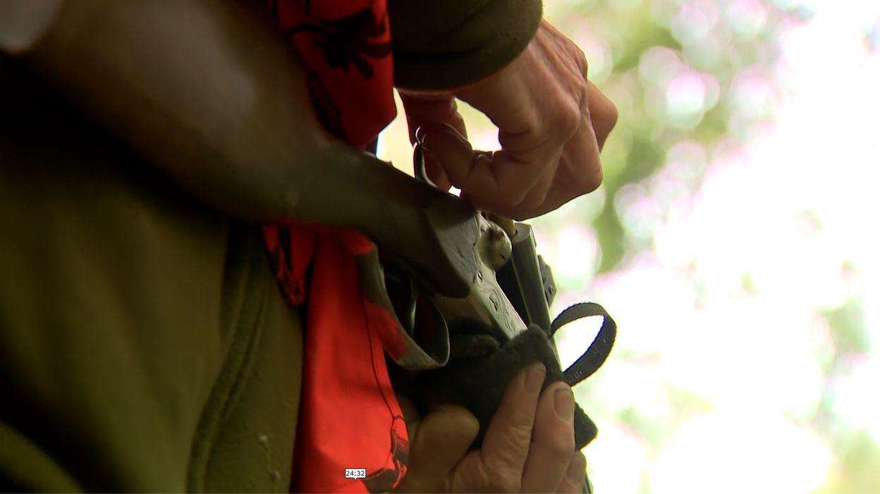 Enquête d'#Investigation sur la chasse : des politiques sous influence ? - RTBF