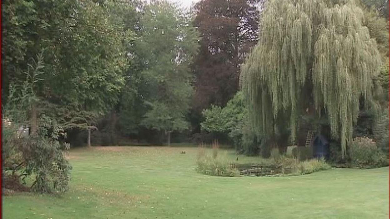Eviter la mousse et le feutre dans le gazon rtbf jardins loisirs - Mousse dans les urines ...