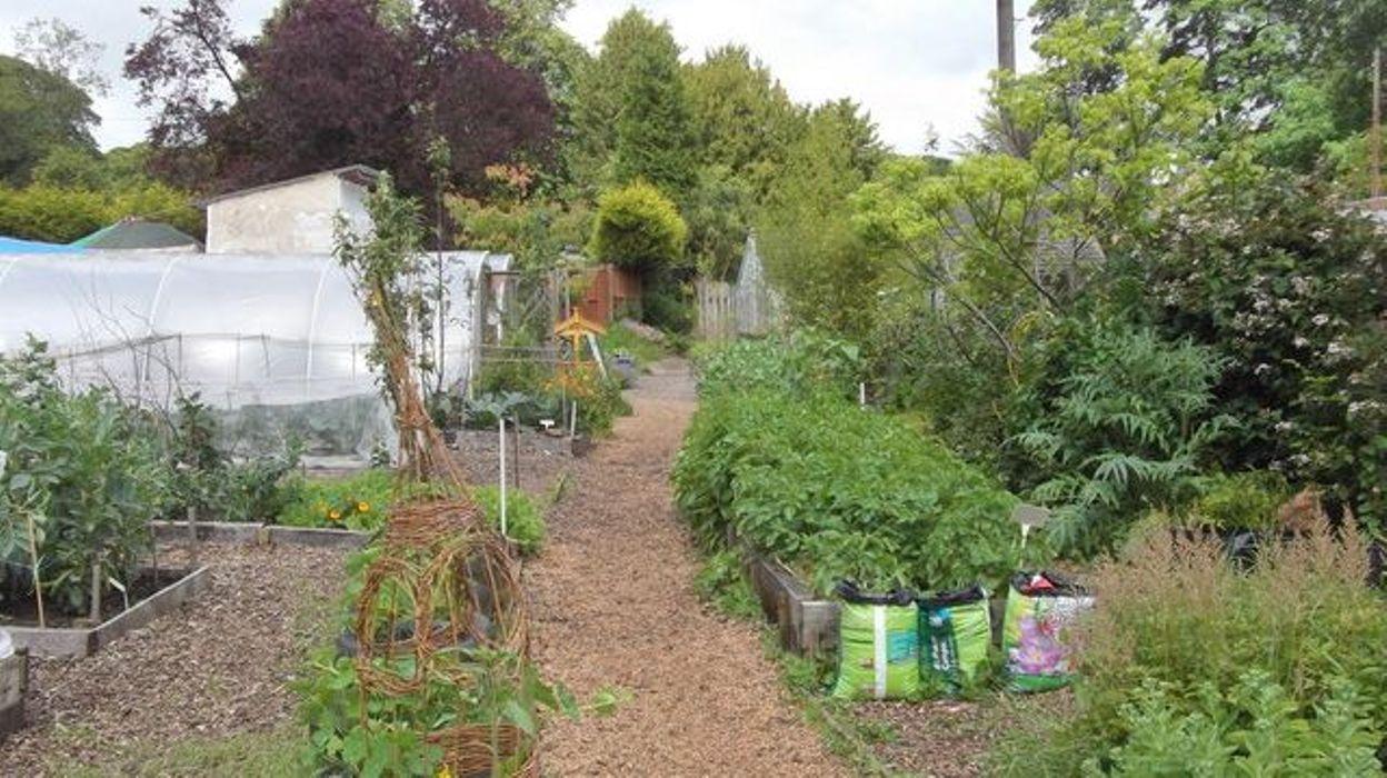 jardinage la permaculture qu 39 est ce que c 39 est. Black Bedroom Furniture Sets. Home Design Ideas