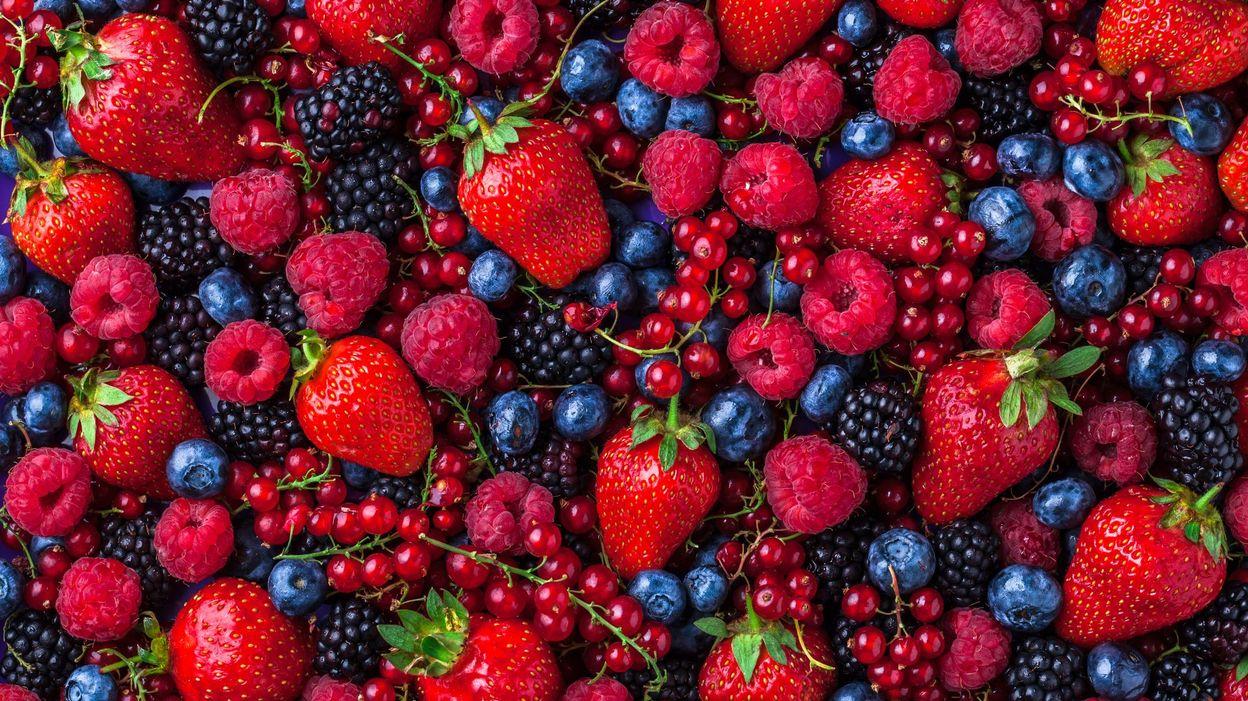 the fruit rouge bienfaits