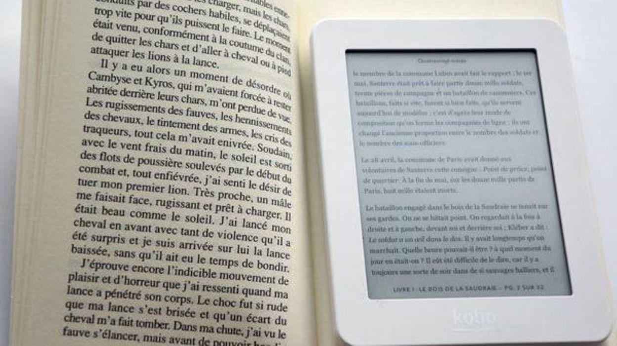 La lecture numérique reste un phénomène confidentiel et le marché des liseuses stagne...