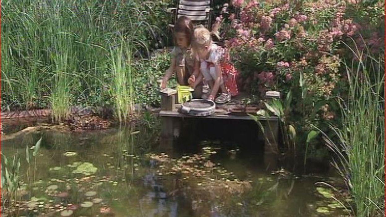 l 39 tang de baignade dans le jardin d 39 evelyne rtbf jardins loisirs. Black Bedroom Furniture Sets. Home Design Ideas