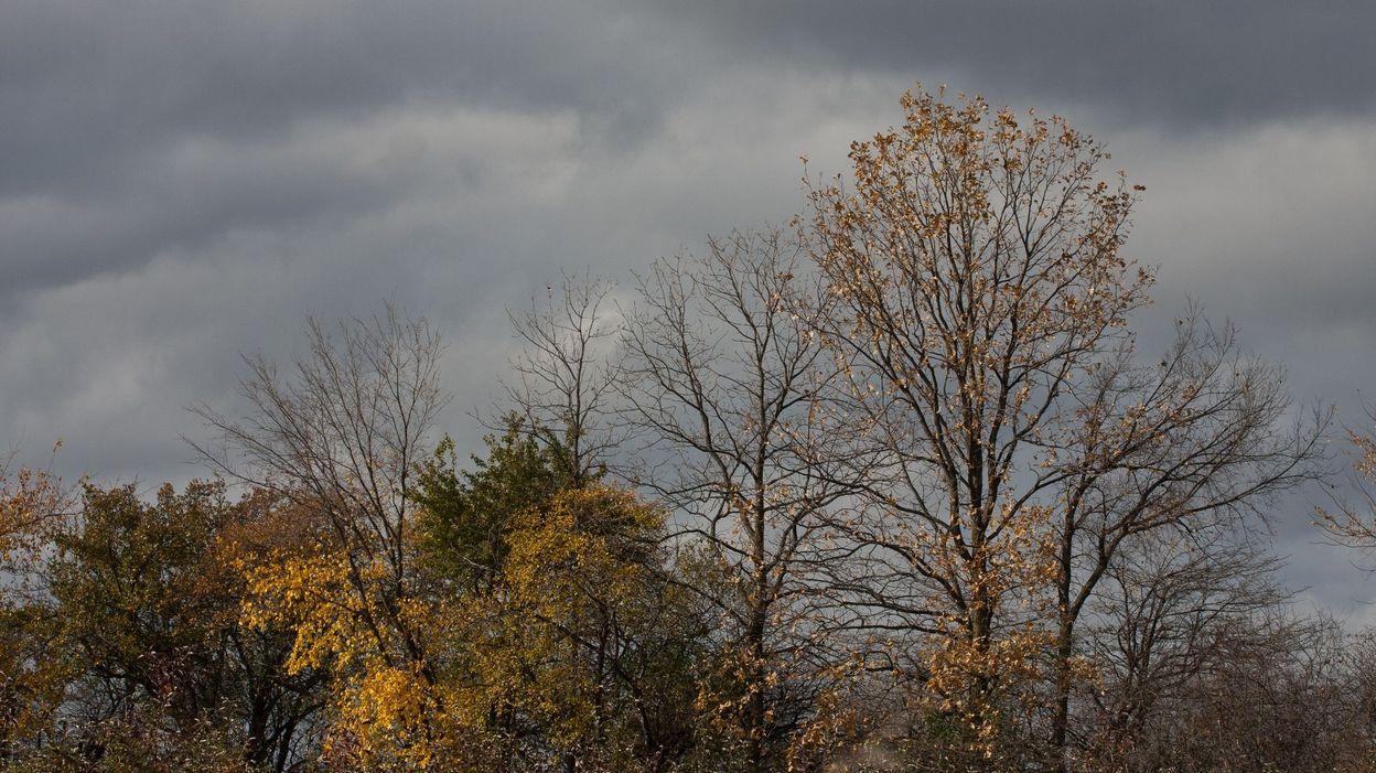 Un vent fort et des nuages domineront le weekend - Nuage et vent ...