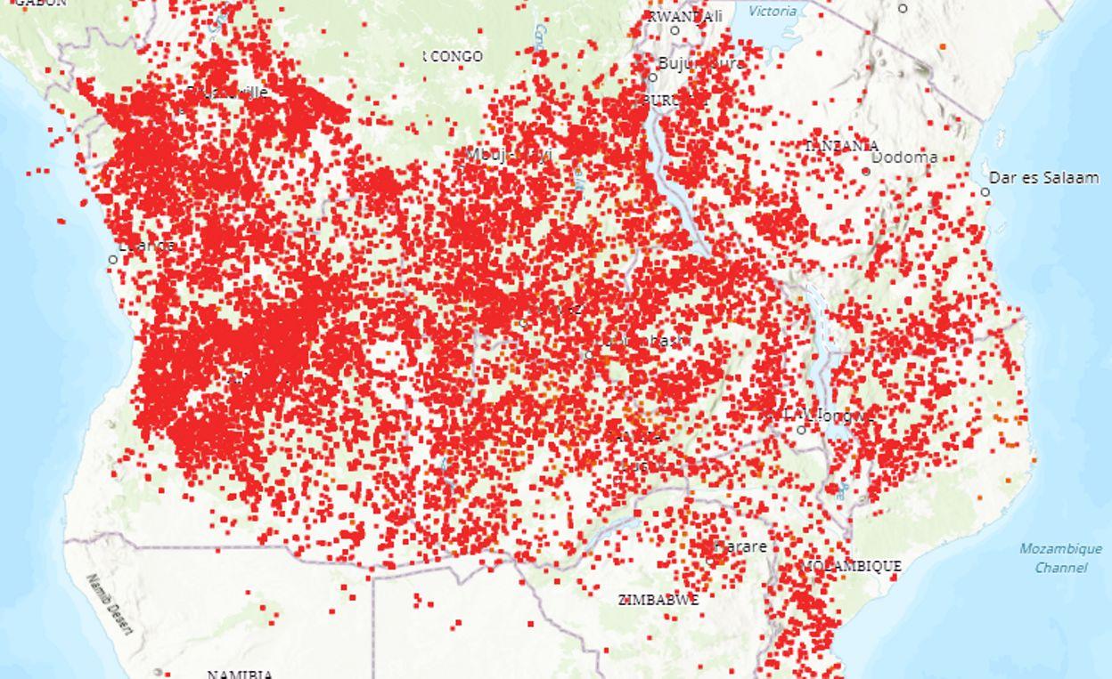 Il y a plus d'incendies en ce moment en Afrique subsaharienne qu'en Amazonie