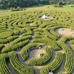 Découvre le labyrinthe de Barvaux-sur-Ourthe