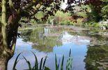 Un site de toute beauté à Ronquières
