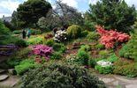 Le jardin botanique d'Edimbourg
