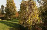 Le jardin privé de Jo de Martelaer