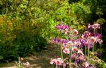 Furzey gardens, le repères des fées