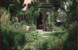 Le jardin de Nicolas et Petrus à Boitsfort