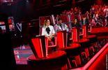 The Voice Belgique : les coachs ont fait le plein de Talents hauts en couleur !