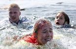 Des jeunes filles démembrées découvertes à Sandhamn