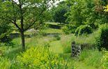 """Le jardin comporte également des parties plus """"sauvages"""""""