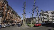 Interpellations houleuses sur la nouvelle politique de stationnement à Schaerbeek