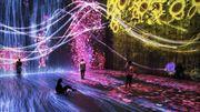 """""""Team Lab : Au-delà des limites"""", l'art numérique dans une autre dimension"""