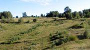 L'une des sites naturels les plus intéressants de Wallonie  : la réserve de Sclaigneaux