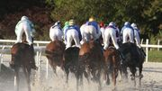 6 courses de galop à l'Hippodrome de Wallonie