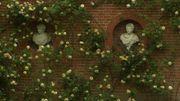 Le jardin du bâtiment sont pris d'assaut par un rosier grimpant