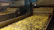 L'usine de transformation de pommes de terre de Leuze-en-Hainaut va devenir l'usine phare du groupe Mc Cain dans le monde