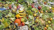 Faire ses courses autrement pour réduire ses déchets alimentaires !