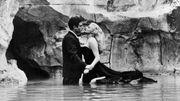Le classique en prime : La Dolce Vita : musiques de films du cinéma italien