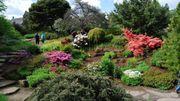 Embarquement pour un voyage au coeur d'un superbe jardin botanique à Edimbourg