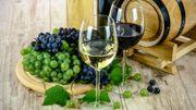 3ème édition du Week-End de Découverte des Vignobles, Brasseries et Distilleries de Wallonie vous réserve quelques surprises et nouveautés aux amateurs de bières spéciales, alcools et vins de notre Région