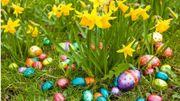 1ere chasse aux œufs indoor à Hamoir